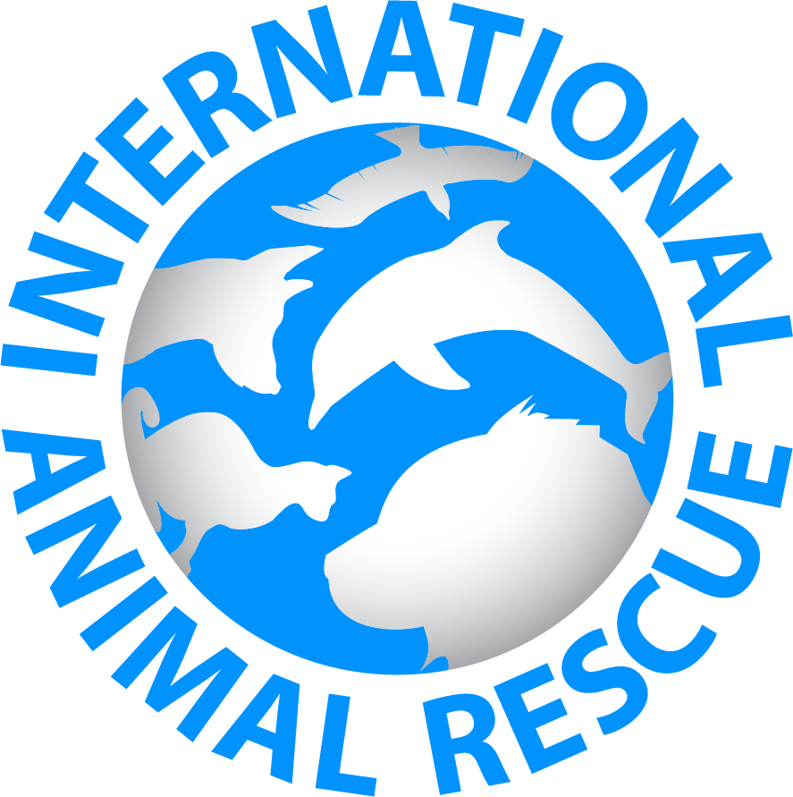 Internation Animal Rescue logo